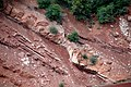 Normal fault in Kayenta Formation redbeds (Upper Triassic-Lower Jurassic), roadcut in Kolob Canyons area, Zion National Park, sw Utah 3 (8425001038).jpg