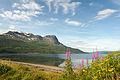 Ofotfjorden i Nordnorge, Johannes Jansson (2).jpg