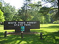 Ogle County IL-White Pines1 056.jpg