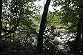 Ohiopyle State Park River Trail - panoramio (101).jpg