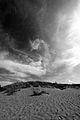 Oltre le dune.jpg