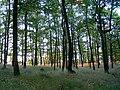Přírodní park Baba410.jpg