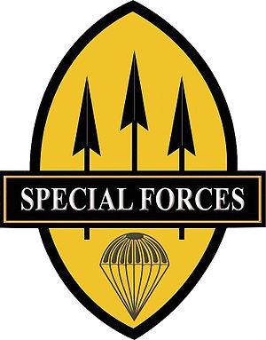 Light Reaction Regiment - Image: PA Special Forces Qualification Badge