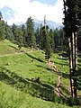 Pahalgam views 58.JPG