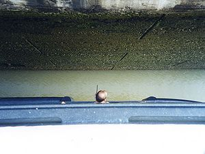 Panamax - Image: Panama Canal watching clearance