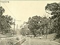Panama and the canal in picture and prose (1913) (14803165223).jpg