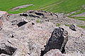 Paravani (14729408664).jpg