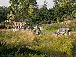 Jardin zoologique de la ville de lyon wikip dia - Jardin zoologique de la ville de lyon ...