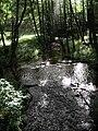 Park Narodowy Bory Tucholskie - Stara Piła.jpg