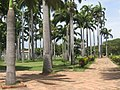 Parque Grancolombiano - Cúcuta.jpg