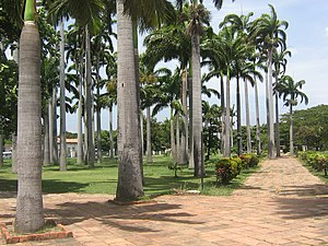 Park of the Greater Colombia - Park of the Great Colombia