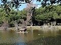 Parque Infanta Elena (Sevilla) 19.jpg