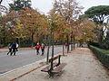 Pedestrian promenade, Madrid's Park Retiro (6382417937).jpg