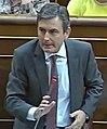 Pedro Saura.jpg