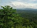 Peradayan Forest Reserve.jpg