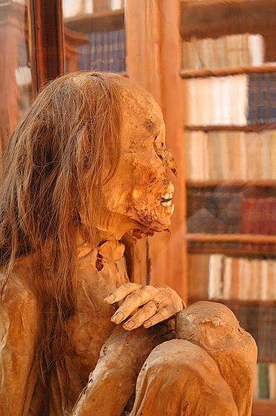 Ficheiro:Peruvian mummy.jpg