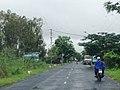Phú Thọ, Tràm Chim, Tam Nông,Đồng tháp. Vietnam - panoramio.jpg