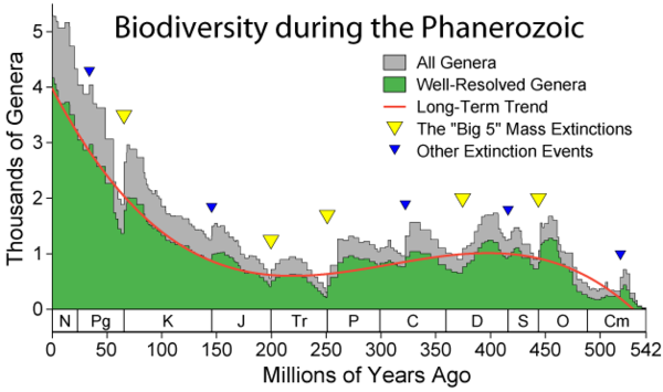 Apparent marine fossil diversity during the Phanerozoic Phanerozoic Biodiversity.png