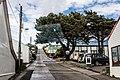 Philomel Street, Stanley (Falkland Islands).jpg