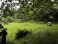 Picnic area near Gogerddan - geograph.org.uk - 23381.jpg