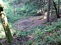 Pikec Valley Mass Grave 2.JPG