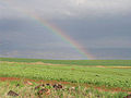 PikiWiki Israel 15963 rainbow in the vally.jpg