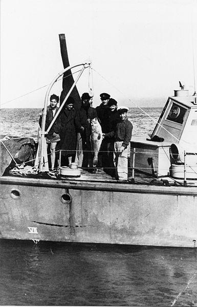 שייטת 13 - הקומנדו הימי בסיור במימי עזה
