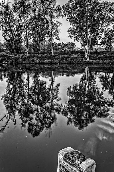 פארק הירקון בשחור לבן