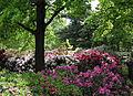 Planten un Blomen 2006c.jpg