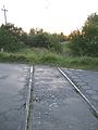 Podlaskie - Narewka - Stare Lewkowo - Linia Narewka-Stare Lewkowo 20110910 01.JPG