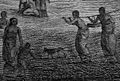 Polynesian dog, Cartes et figures du troisième voyage de Cook, 1785 Réception du capitaine Cook a Hapaee (19386794779).jpg