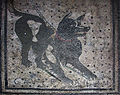 Pompeii - Cave Canem (4786638740).jpg