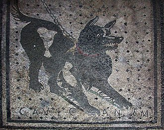 "Roman mosaic - A Roman mosaic inscribed with the Latin phrase cave canem (""beware of the dog""), from the House of the Tragic Poet in Pompeii, Italy, 2nd century BC"