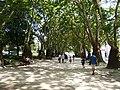 Porto, Jardim da Cordoaria (3).jpg