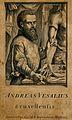 Portrait of Andreas Vesalius (1514 - 1564), Flemish anatomist Wellcome V0006028ER.jpg