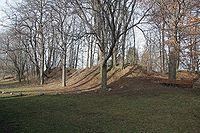 Pozůstatky valů keltského oppida Hradiště u Nasavrk2.jpg