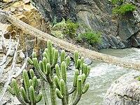 Photographie.Un pont suspendu au-dessus d'une vallée torrentielle