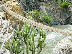 Puente Inca Pucayaku 2.jpg