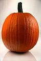 Pumpkin 264 - Evan Swigart.jpg