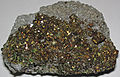 Pyrite crystal-lined vug in vuggy, sucrosic dolostone (Lockport Dolostone, Middle Silurian; National Lime & Stone Company Buckland Quarry, Auglaize County, Ohio, USA) 2 (18584827064).jpg