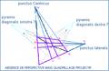 QuadrillagePyramisDiagonalis.PNG