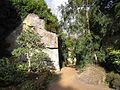 Quarry Garden, Belsay Hall - geograph.org.uk - 1172203.jpg
