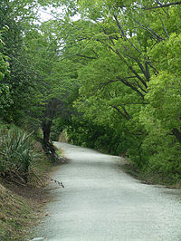 The Queenstown Trail