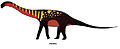 Quetecsaurus.jpg