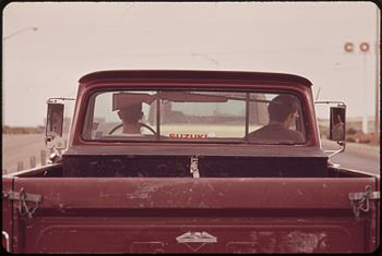 RIFLE IN PICKUP TRUCK - NARA - 549220