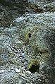RIPangururanHotSprings4.jpg