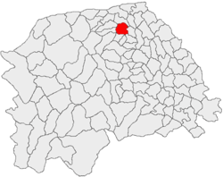Location of Rădăuți