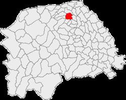 Vị trí của Radauti
