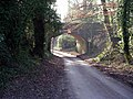 Railway bridge over Chillandham Lane - geograph.org.uk - 113526.jpg