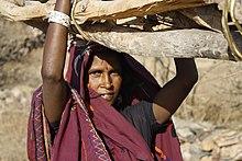Başında topladığı yakacak odun taşıyan bir kadının fotoğrafı